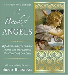 BOOK OF ANGELS: (new edition)